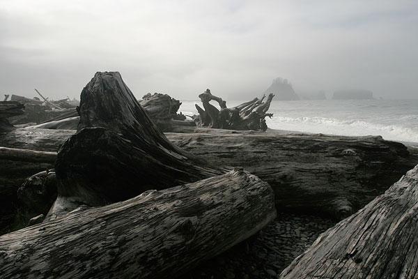 Olympic's Pacific coastline
