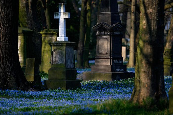 Cemetery - Braunschweig